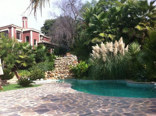 "Casa de Laila | Glamping & Retreats: Pool area on a ""cold"" day in November (26 degrees or so)"