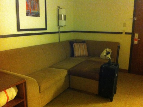 Hyatt Place North Raleigh-Midtown: Double bed room