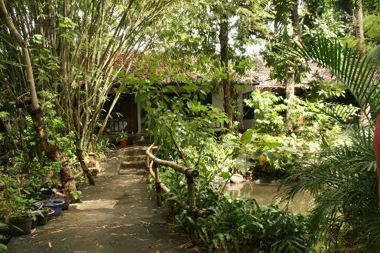 Murex Dive Resort: bungalows in the midst of green garden