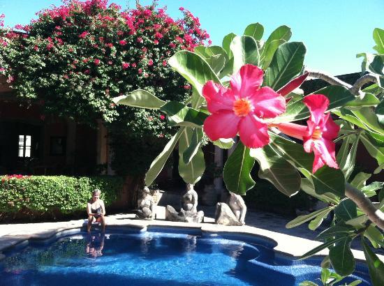 Hacienda De Los Santos: One of the Tranquil Pool Areas