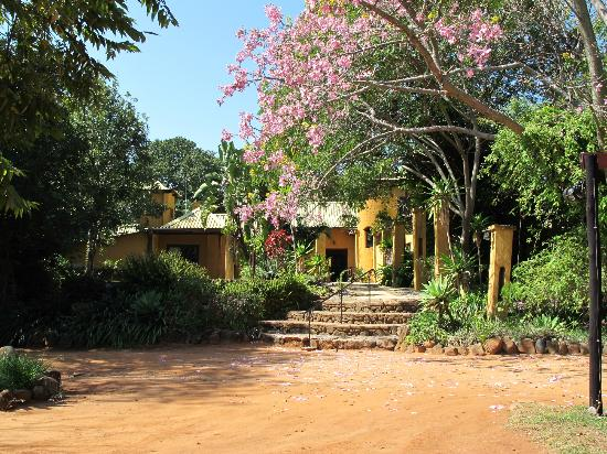 Gecko Lodge: Entrance