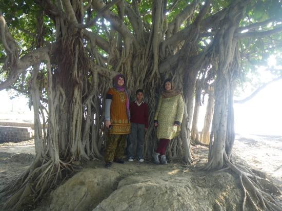 Atmajyoti Farm and Homestay: tchai chez les voisins