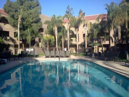 Embassy Suites by Hilton Hotel Phoenix - Tempe: Our rooms were right behind the 4 deck chairs. Just beautiful!