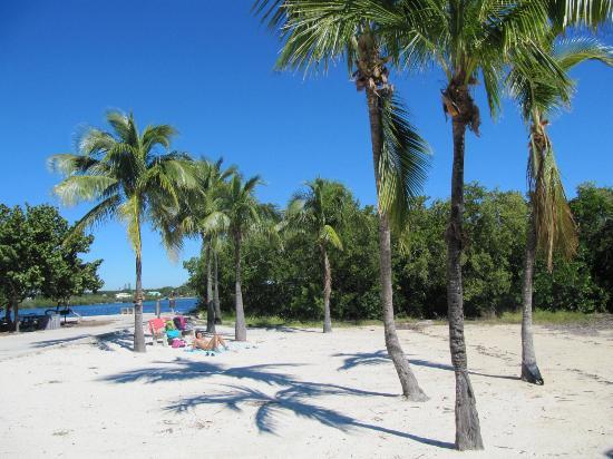 John Pennekamp Coral Reef State Park: plage de rêve