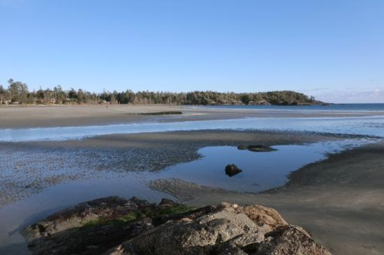 Middle Beach Lodge: MBL beach at low tide