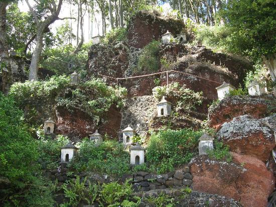Lawai International Center: Part of the hillside