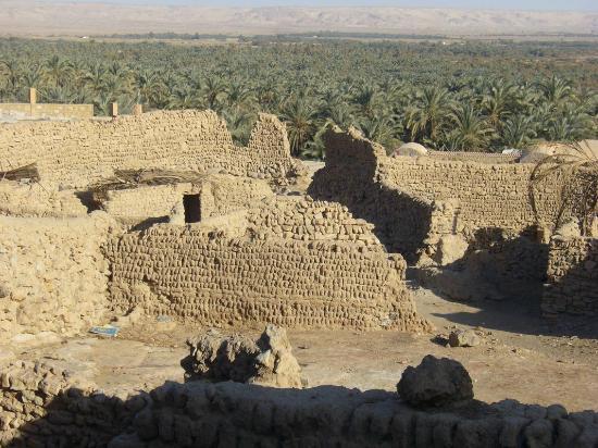 Old Bawiti: Ausblick über die Oase nach Norden