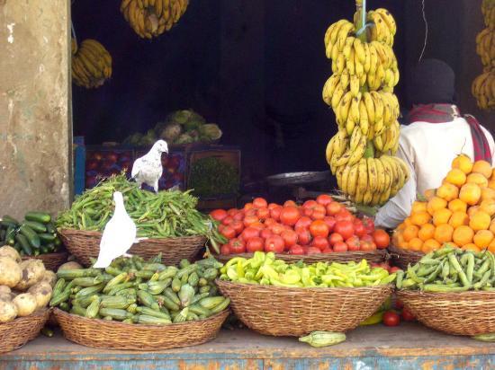 Old Bawiti: friedlicher Gemüseladen