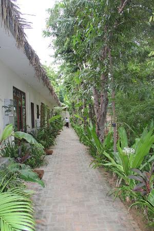 Blue Bird Hotel: Walkway to room