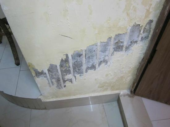 ‪‪Hotel Saniya Place‬: Water damaged wall‬
