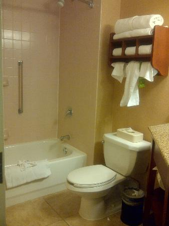 Hampton Inn University Midtown Albuquerque: Hampton Inn Albq Midtown Queen Room Bath 1st Floor