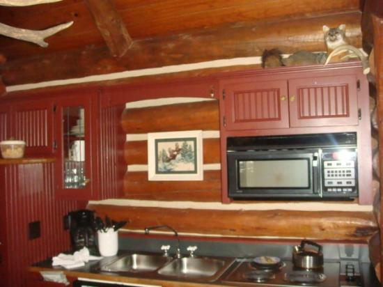 Big Cedar Lodge: kitchen inside cabin