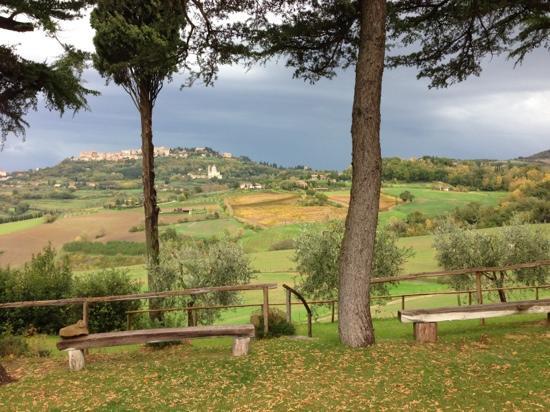 Agriturismo Villa Mazzi: Montepulciano che si vede del agriturismo