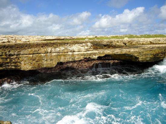 Luxury Safari Antigua: Devil's Bridge