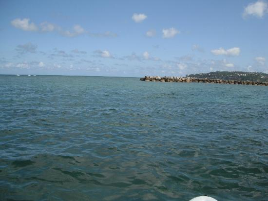 Sunscape Splash Montego Bay: View From The Beach