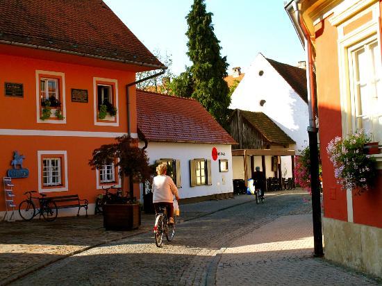Varazdin (The Old Castle) : street of Varazdin
