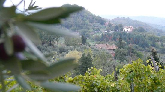 Villa il Castellaccio: View of property from road