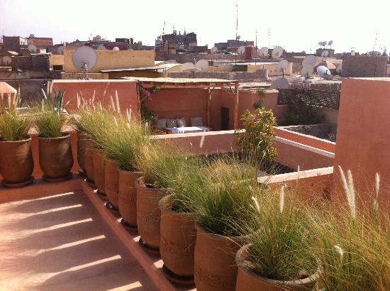 Dar Akal: Sur le toît-terrasse