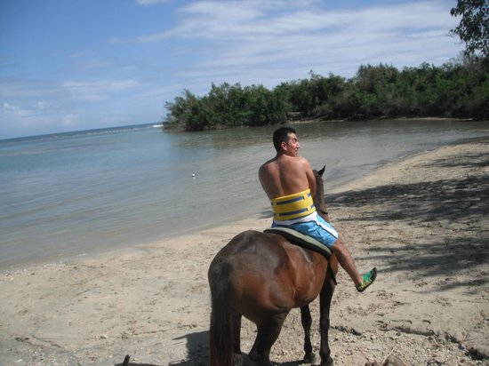 Horseback Riding In The Ocean Chukka Tours Picture Of