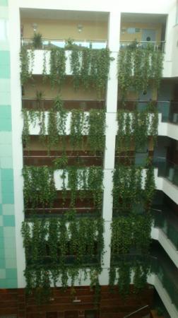Senator Granada Spa Hotel: pasillos