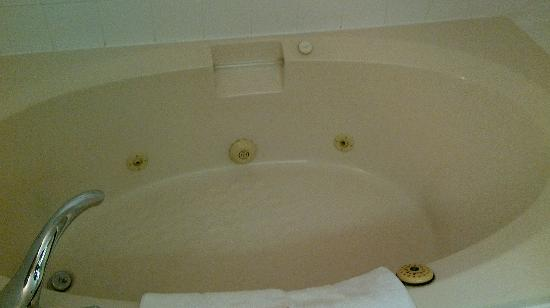 Sheraton Parkway Toronto North: Jacuzzi Tub. -- I didn't use it.
