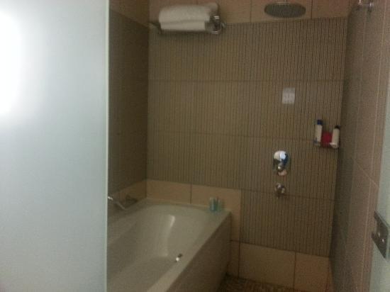 Hilton Dalaman Sarigerme Resort & Spa : Separate bath & Walk in rain shower x