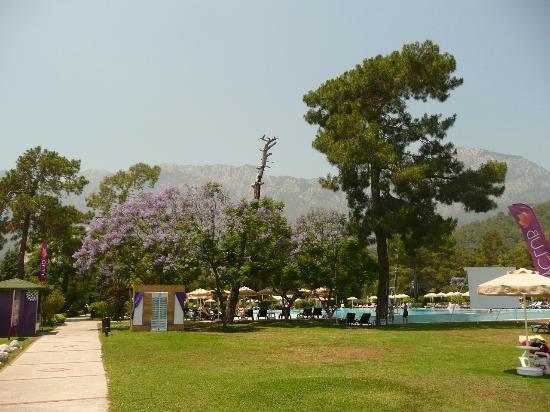 Club Marmara Kimeros Hotel : espace entre piscine et plage