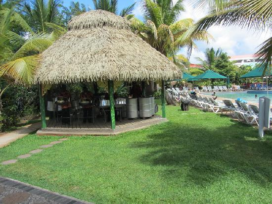 Ti Bananne Caribbean Bistro: Steelpan playing poolside at Sunday brunch