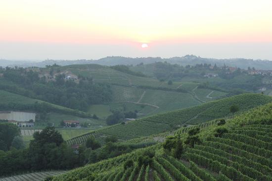 Bed & Breakfast Profumi: View over the vineyards