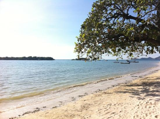 Palm Island Hotel: vue sur la mer en face de l'hôtel