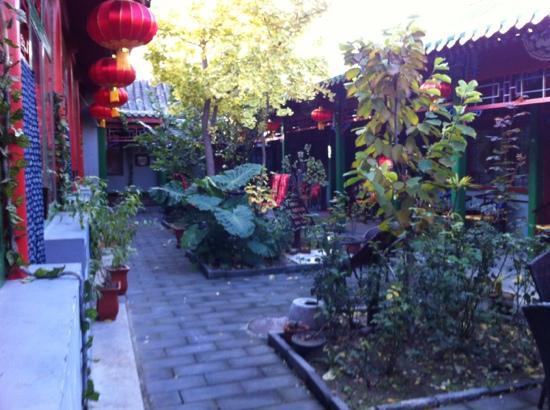 Double Happiness Beijing Courtyard Hotel: Einer der Innenhöfe im Herbst