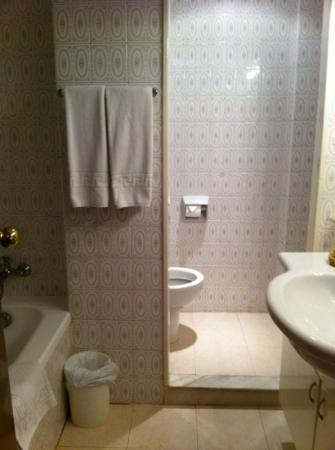 Hotel Las Piramides: bathroom was ok