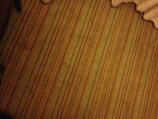 Hilton Fort Lauderdale Marina: Soiled carpet next to the bed