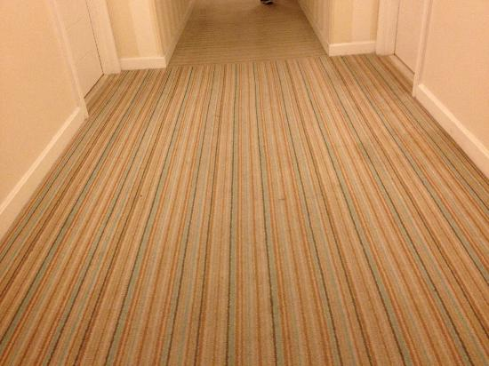 Hilton Fort Lauderdale Marina: The carpeting in the hallways was very soiled