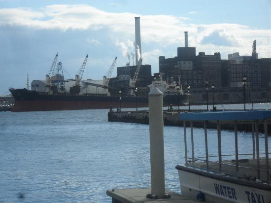 Art Gallery of Fells Point: Harbor Views