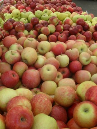 Wolff's Apple House: Apples ......so crisp and juicy