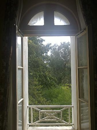Moulin de la Roque: Vue de notre chambre