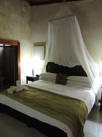 Falls Resort at Manuel Antonio: La chambre