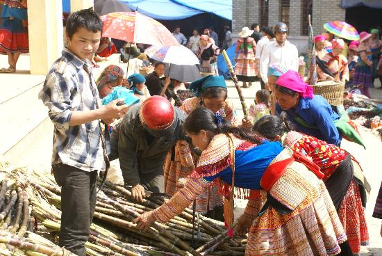 Custom Vietnam Travel Day Tours: Bac Ha Market