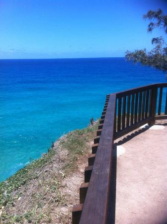 North Gorge Walk: Part of the Boardwalk at Point Lookout's Gorge Walk.