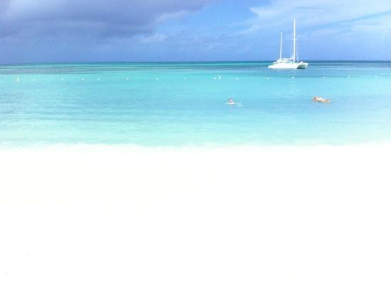 Occidental Grand Aruba All Inclusive Resort: La spiaggia davanti al Grand Occidental Aruba...una meraviglia!