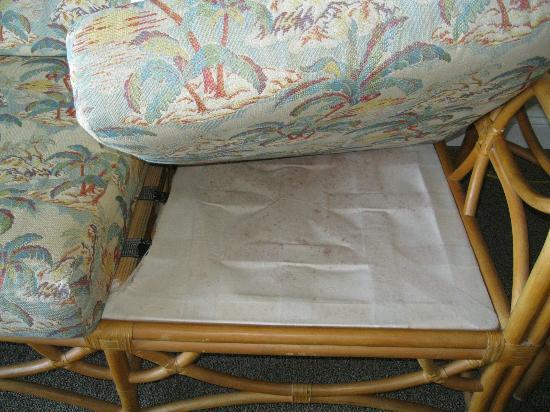 Sea Village Resort: Under sofa cushion 