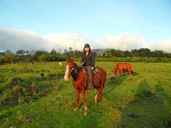 Casa Batsu: Horse ride in our property