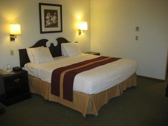 GuestHouse Acorn Inn: A comfy bed!