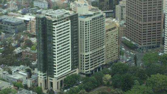 Pullman Sydney Hyde Park: Hotel visto desde la torre mas alta de Sydney ( whitefield) 