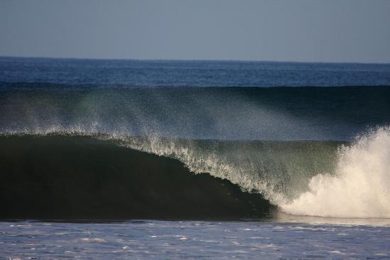 Adrenalina Kite & Surf Camp: perfect waves .....
