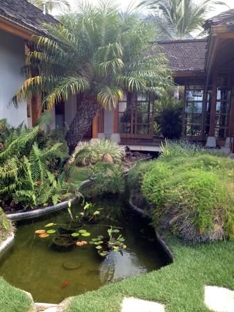 Ho'oilo House : Pretty garden