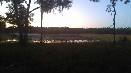 "Gold Head Branch State Park: the lake by the ""Lake Loop"" at sunset"