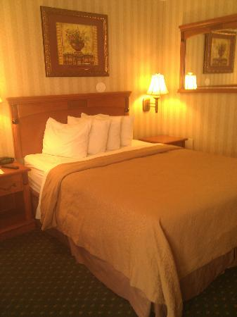 Quality Inn & Suites - Anaheim Resort: Very cozy room!