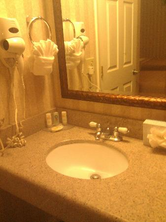 Quality Inn & Suites - Anaheim Resort: Cute vanity mirror and sink.
